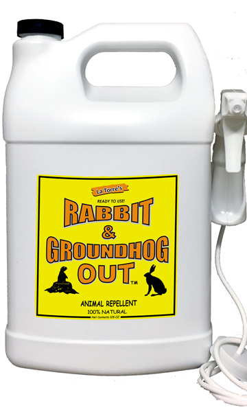 Groundhog Repellent, Rabbit Repellent