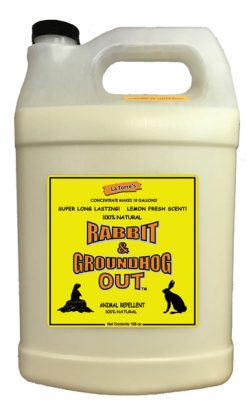 Rabbit Out 1 gallon Concentrate New